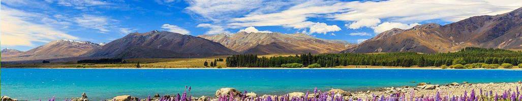 newzealandft