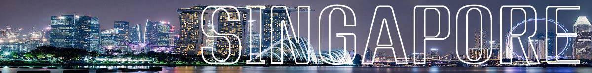新加坡物流公司